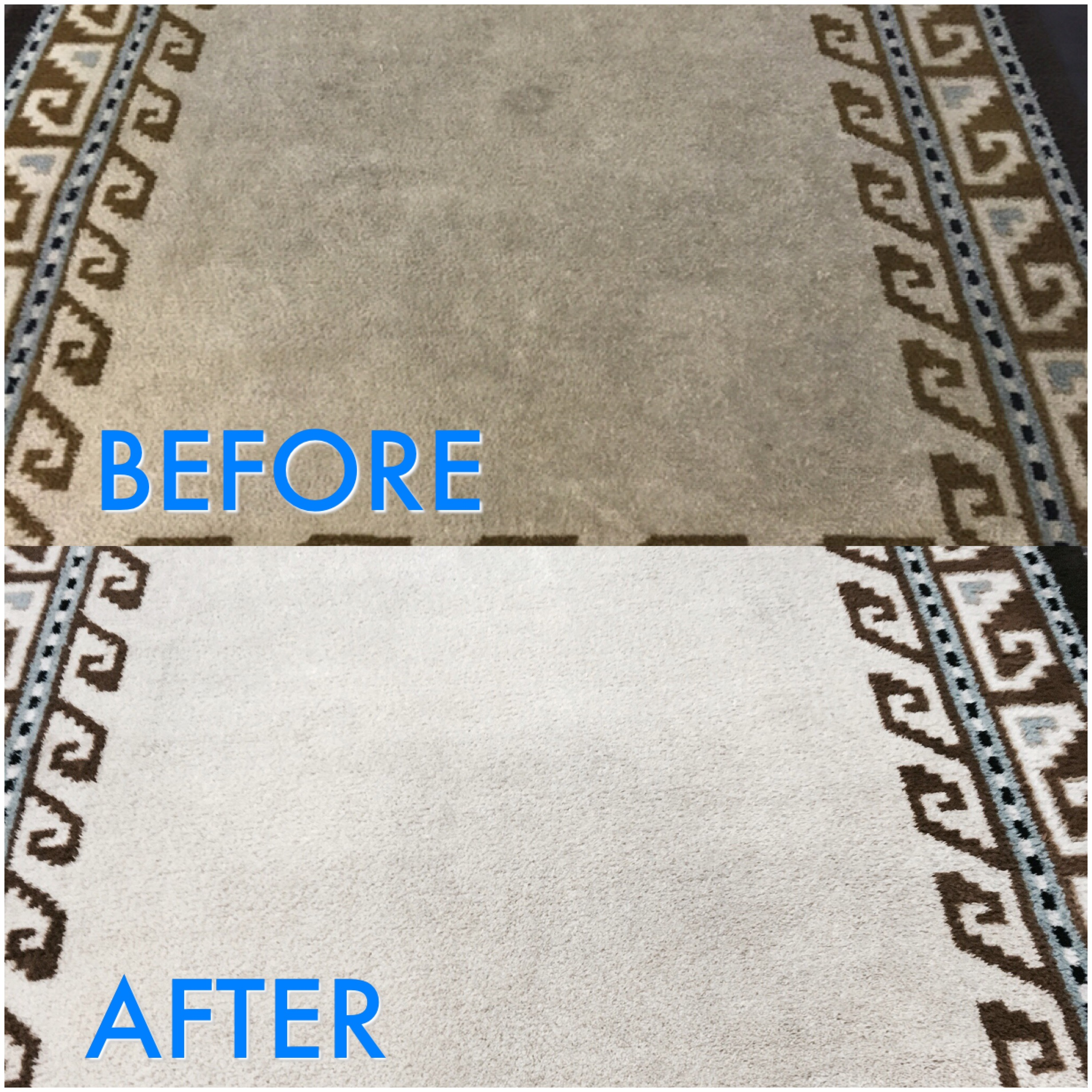Oriental Amp Area Rug Cleaning Carpet Tech Services
